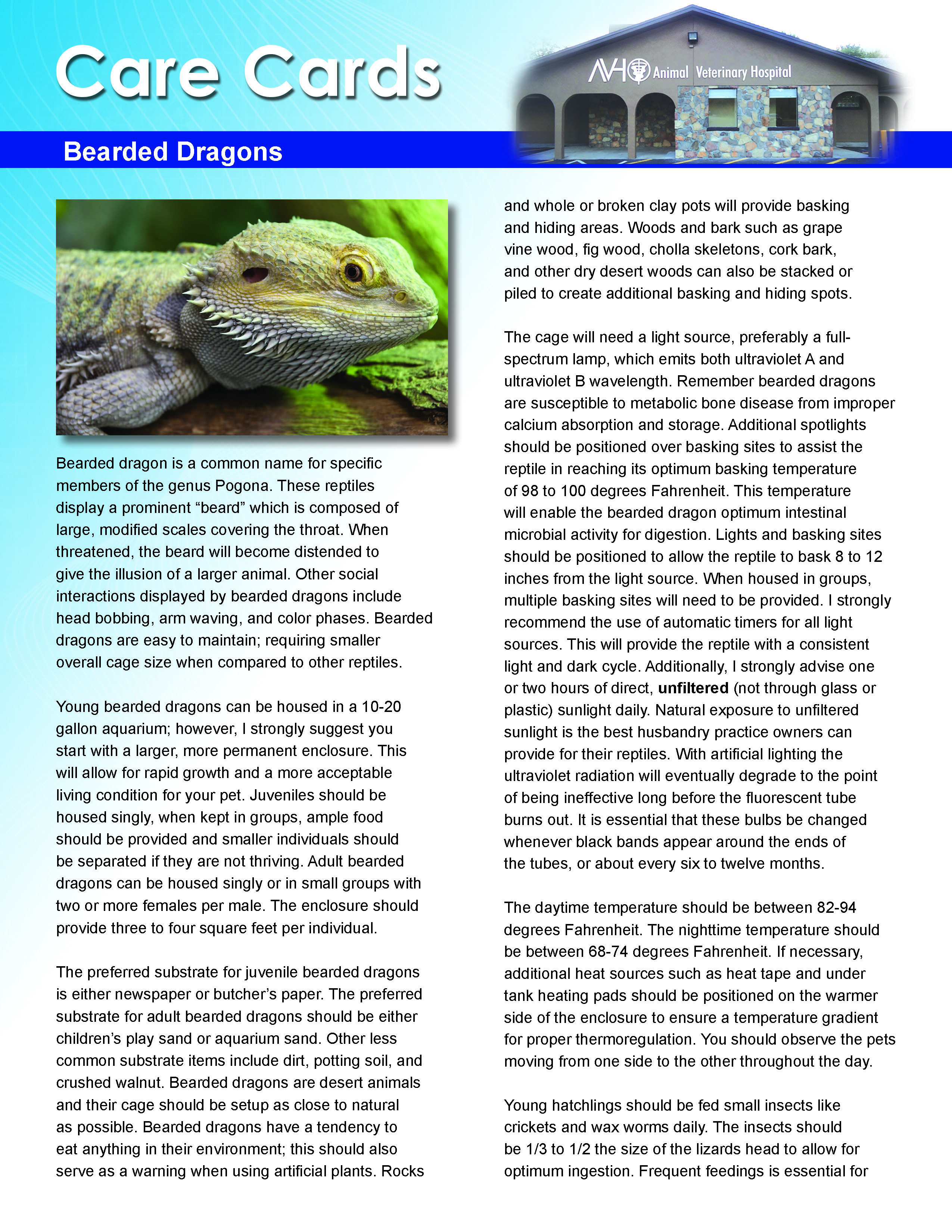 Bearded Dragons Care Card