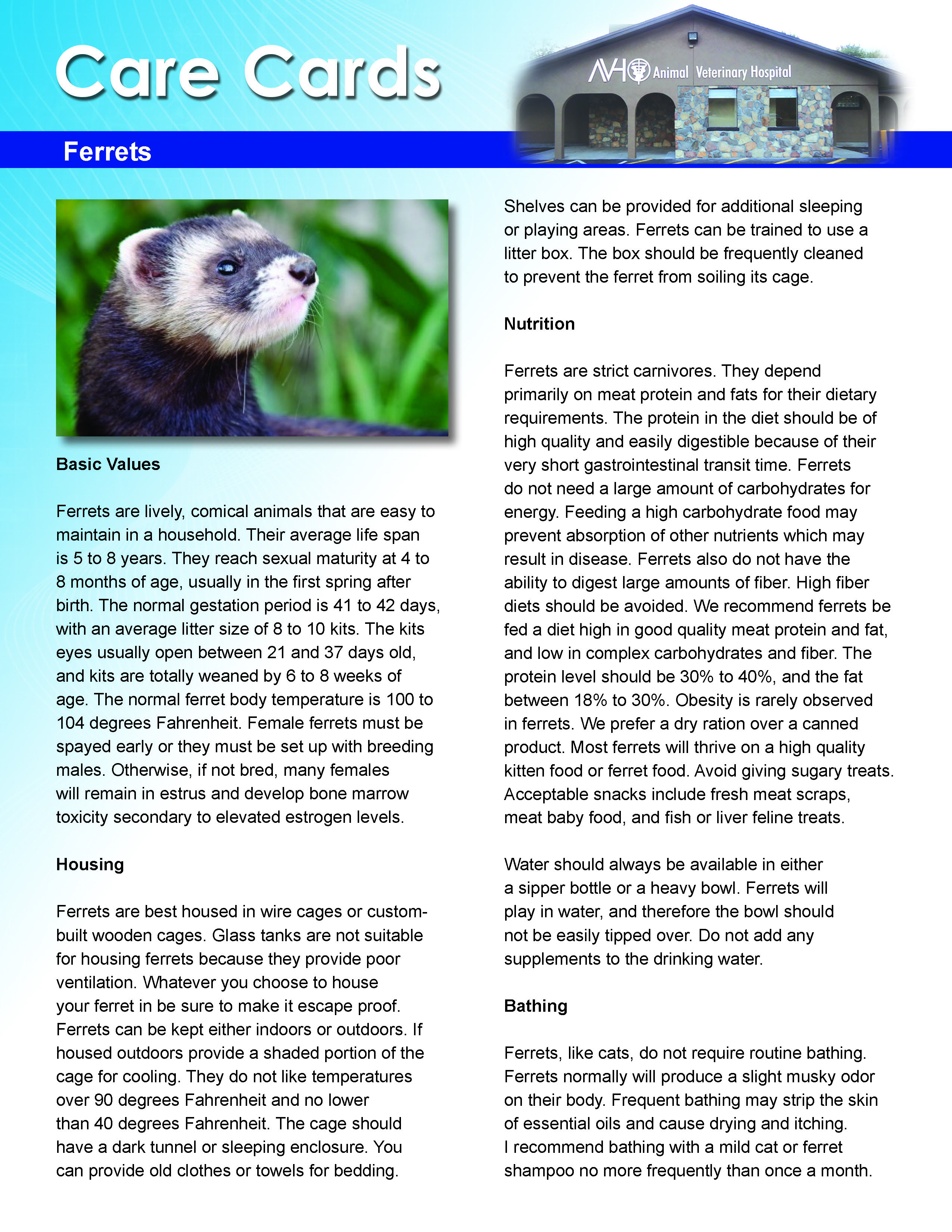 Ferret Care Card